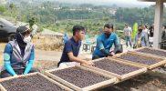 DPD RI Perwakilan Jawa Tengah, Denty Eka Widi Pratiwi dorong anak muda jadi pengusaha kopi. (Foto:nyatanya.com/Diskominfo Jateng)
