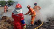Pemadam Kota Yogyakarta saat memadamkan api yang membakar tumpukan rumput kering di Altar, pagi tadi. (Foto:nyatanya.com/@damkarjogja113)