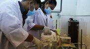 Mahasiswa Universita PGRI Semarang memproduksi cairan pembersih tangan yang diperuntukkan bagi masyarakat. (Foto: Diskominfo Jateng)
