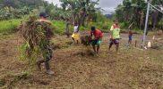 Karya Bhakti yang dilakukan oleh personel Satgas Pamtas dengan masyarakat di wilayah perbatasan. (Foto:nyatanya.com/Yonif 403/WP)