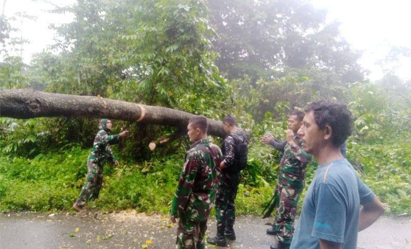 Evakuasi pohon tumbang mengerahkan beberapa prajurit dengan menggunakan kampak, parang dan tali tambang. (Foto:nyatanya.com/Pen Satgas Yonif 403/WP)