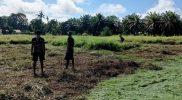 Personil Pos Iwur Satgas Pamtas Yonif 403/Wirasada Pratista gotong royong memangkas padang rumput menjadi sarana olah raga lapangan sepak bola bersama masyarakat. (Foto: Pen Satgas Yonif 403/WP)