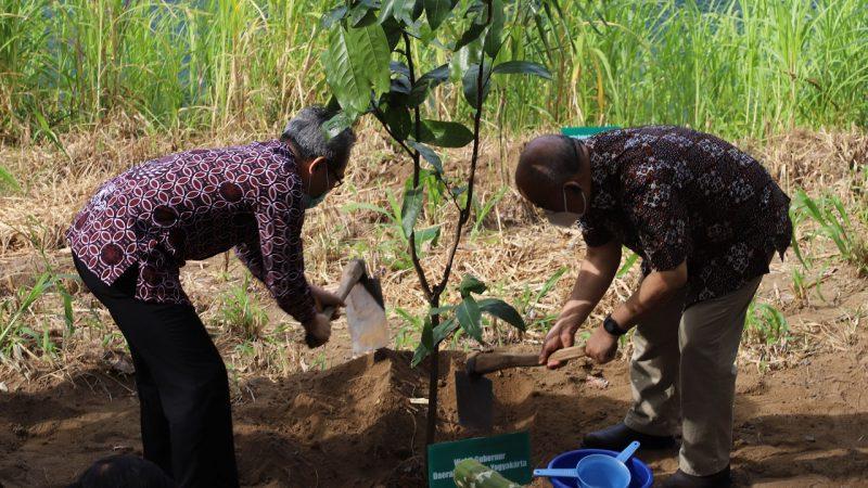 Wakil Gubernur DIY KGPAA Paku Alam X secara simbolis menanam pohon pencanangan Agroforestry di Alas Pengkol Sriharjo Imogiri Bantul. (Foto: Humas Bantul)