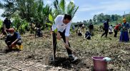 Presiden Jokowi menanam mangrove bersama masyarakat Desa Tritih Lor, Kecamatan Jeruklegi Kabupaten Cilacap. (Biro Pers, Media, dan Informasi Sekretariat Presiden)