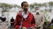 Presiden Jokowi menegaskan, rehabilitasi mangrove ini akan terus dilakukan tidak hanya di Kabupaten Bengkalis, tetapi di seluruh Tanah Air. (Foto:Mediacenter Riau)