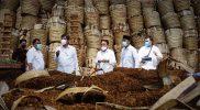 Dirjen Industri Agro Kementerian Perindustrian (Kemenperin) RI Putu Juli Ardika saat mengunjungi gudang tembakau milik Pabrik Gudang Garam dan Djarum di Temanggung. (Foto: Diskominfo Temanggung)