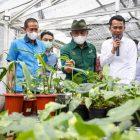 Tanaman hias memiliki potensi besar dikembangkan di Indonesia. (Foto: Kemenkop UKM)