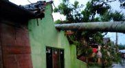 Hujan lebat disertai angin kencang yang terjadi di Semarang, Kamis (21/10/2021) mengakibatkan sejumlah rumah warga rusak. (Foto: BPBD Kota Semarang)
