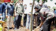 GKR Hemas menanam pohon nangka di area Hutan Tematik Wana Boga, Candi, Karangmojo, Gunungkidul. (Foto: Humas Pemda DIY)